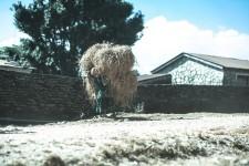 Sarangkot~Austrian camp | Client Wroks | photo © KENGO WATANABE.
